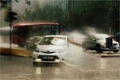 Sommerregen (2)