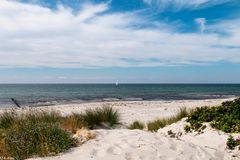Sommerträume - Hiddensee (2)