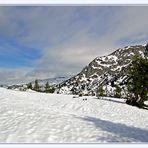 Sommerurlaub im Schnee *5*