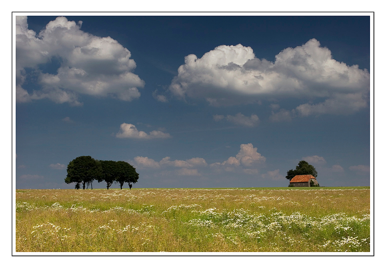 Sommerwiese - Paderborner Land