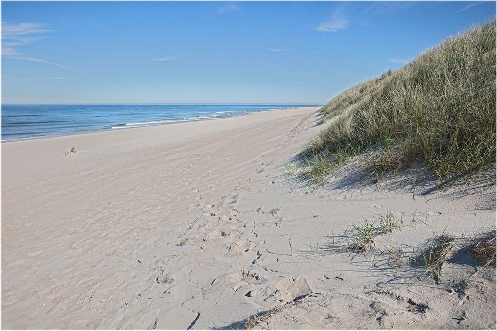 Sondervig Strand 3