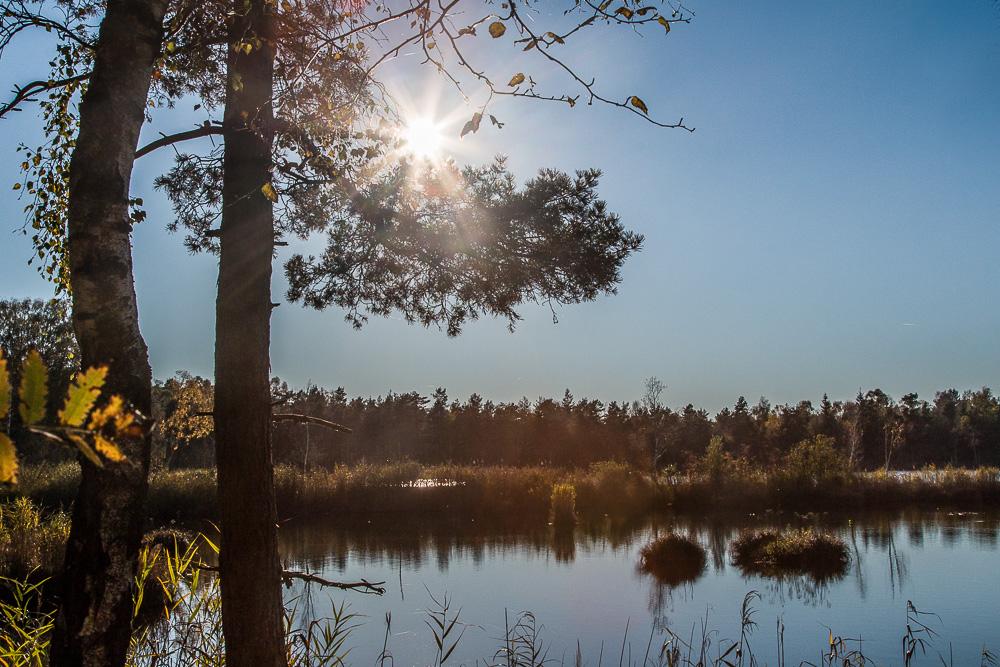 Sonne am Riedsee