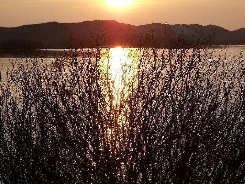 Sonne am See