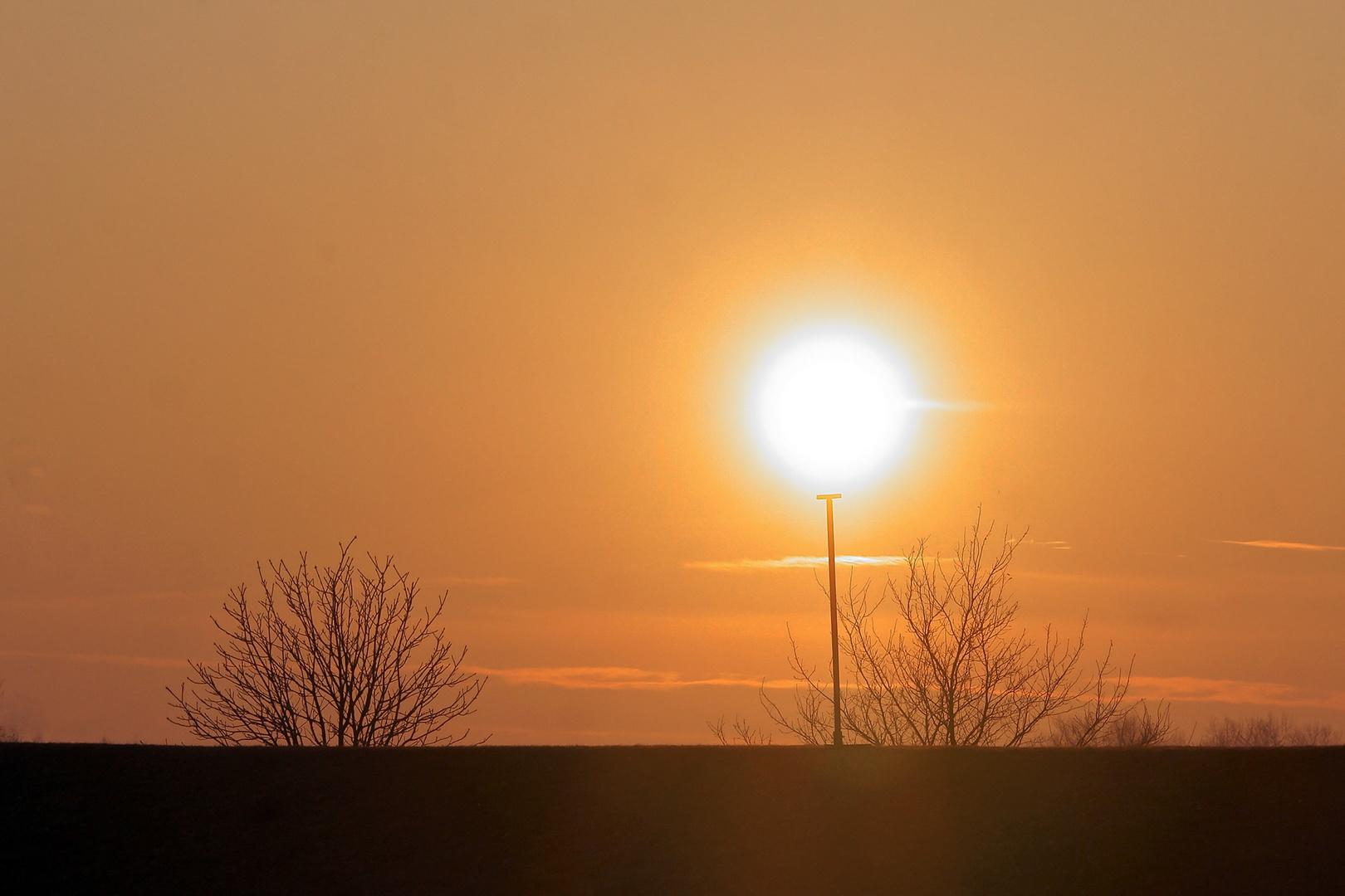 Sonne am Stiel...