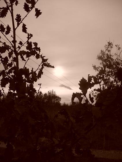 Sonne im Tagebau