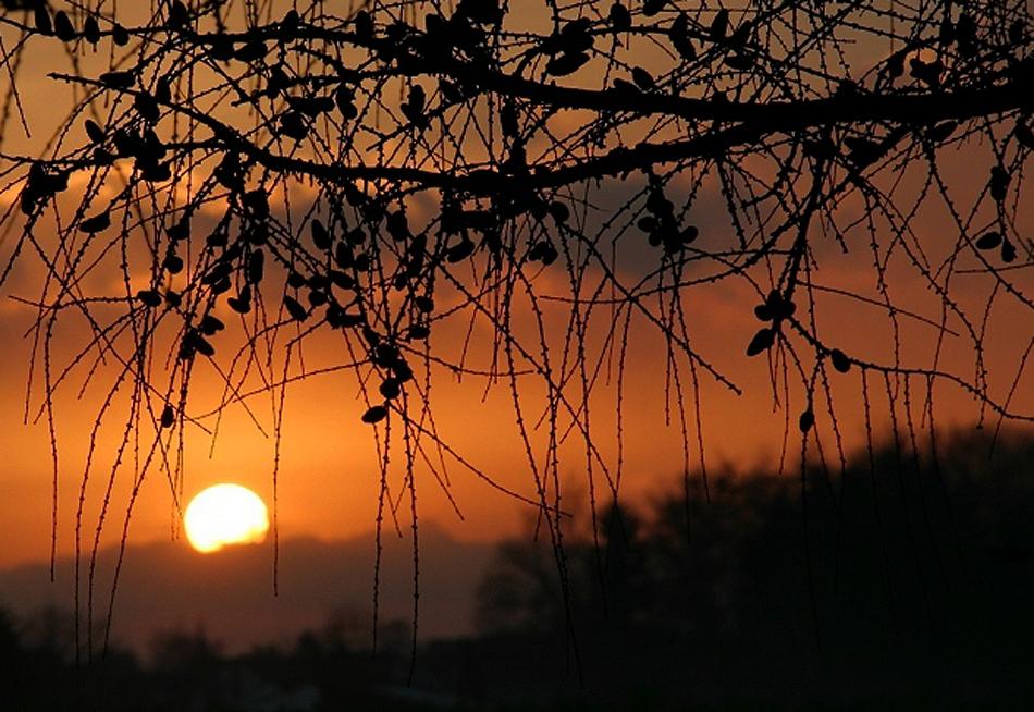 Sonne in der Nacht....