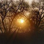Sonne in Seelze