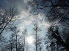 Sonne kämpft sich vor Wolken hervor