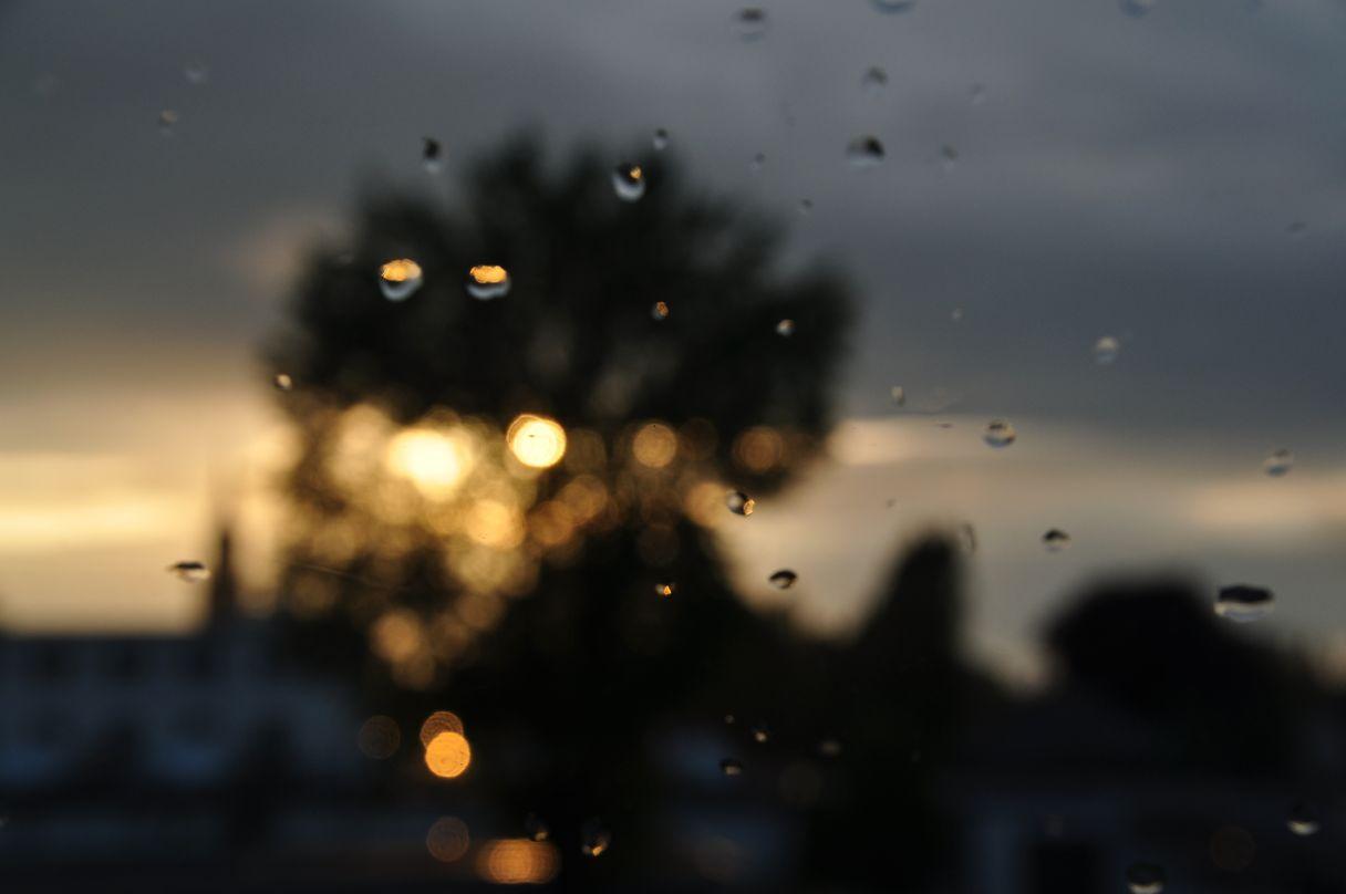 Sonne nach Regen