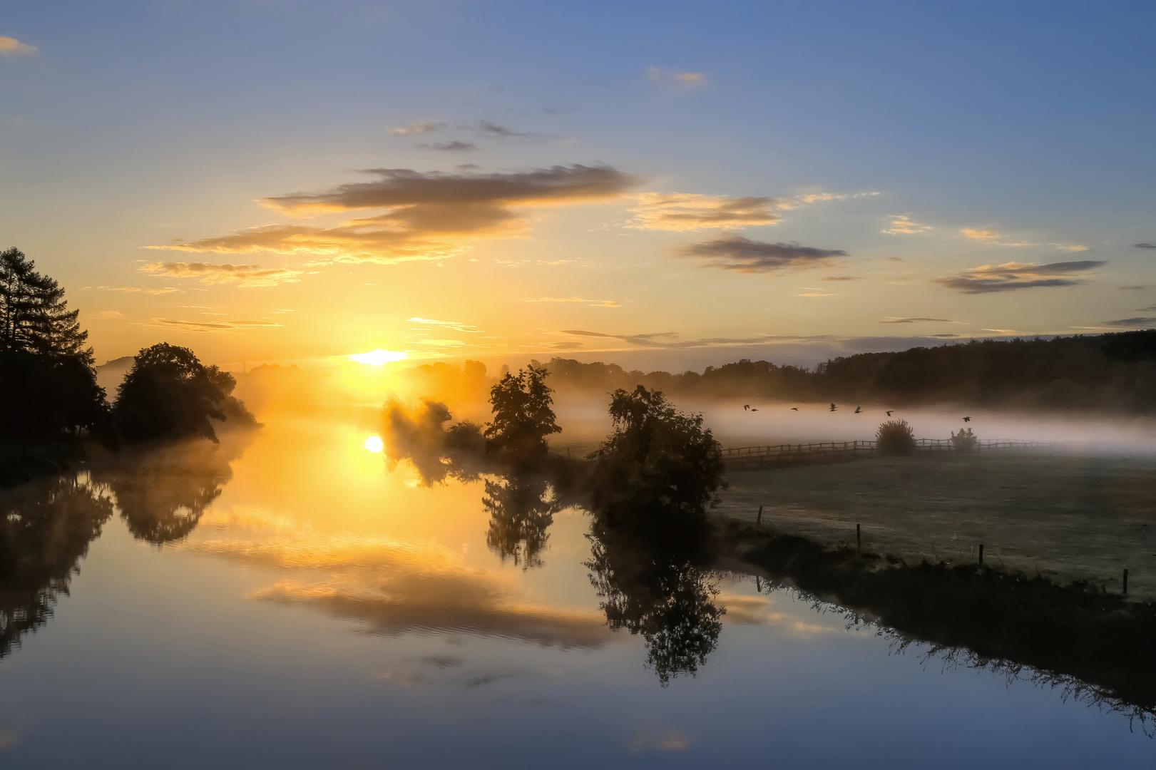 Sonne, Nebel und Vogelflug