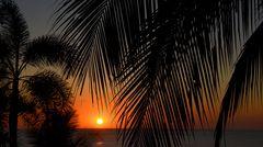 Sonne, Palmen und Meer