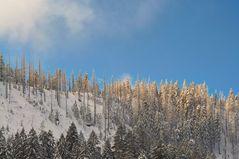 Sonne, Schnee und blauer Himmel II