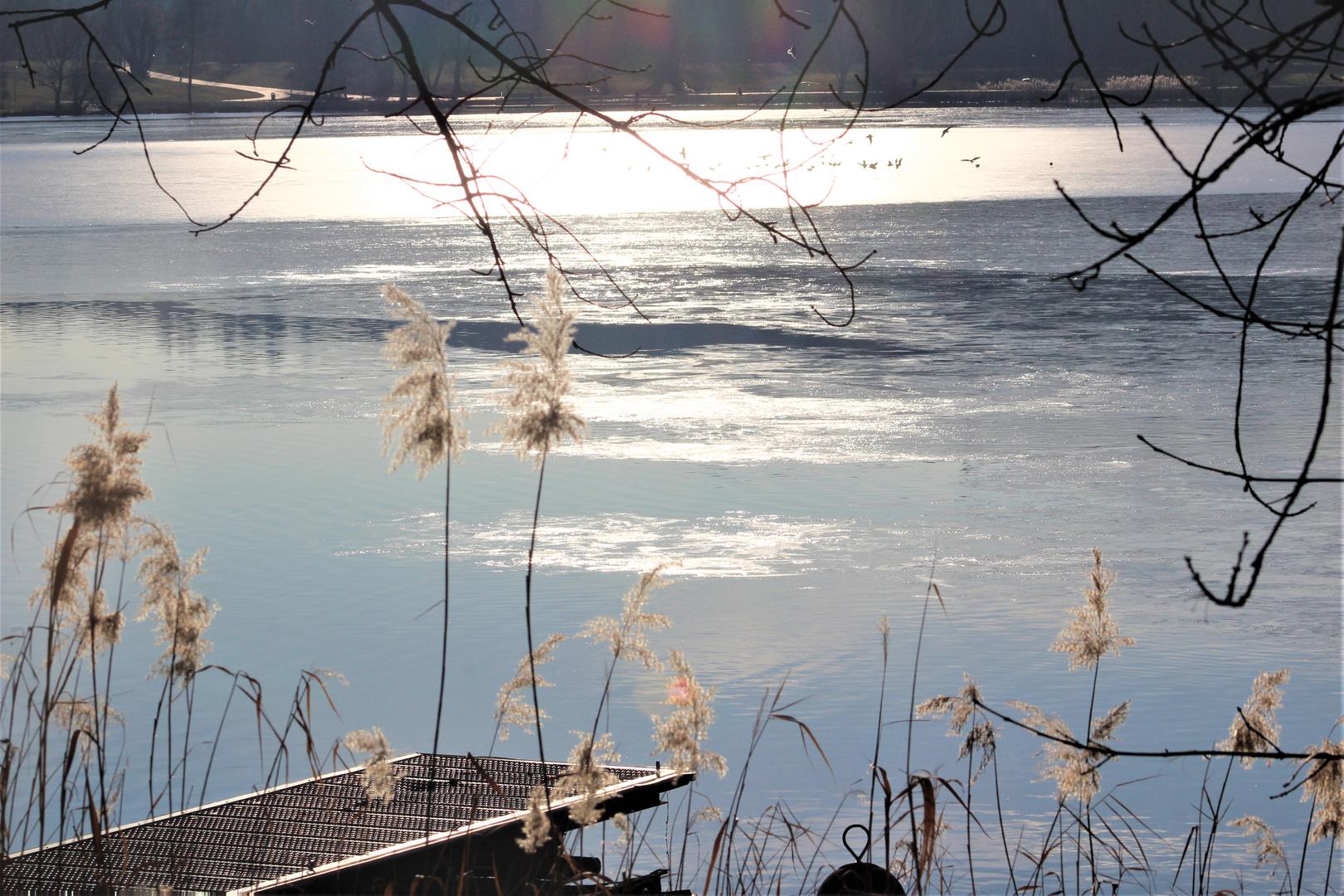 Sonne trifft See