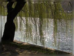 Sonne trifft Wasser