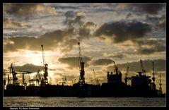 Sonne über dem Dock - Sun above the dock
