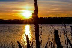 Sonne über dem Fluss