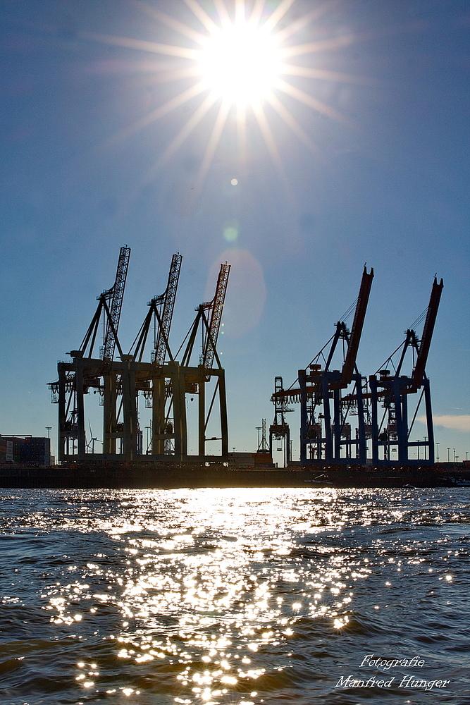 Sonne über den Containerbrücken