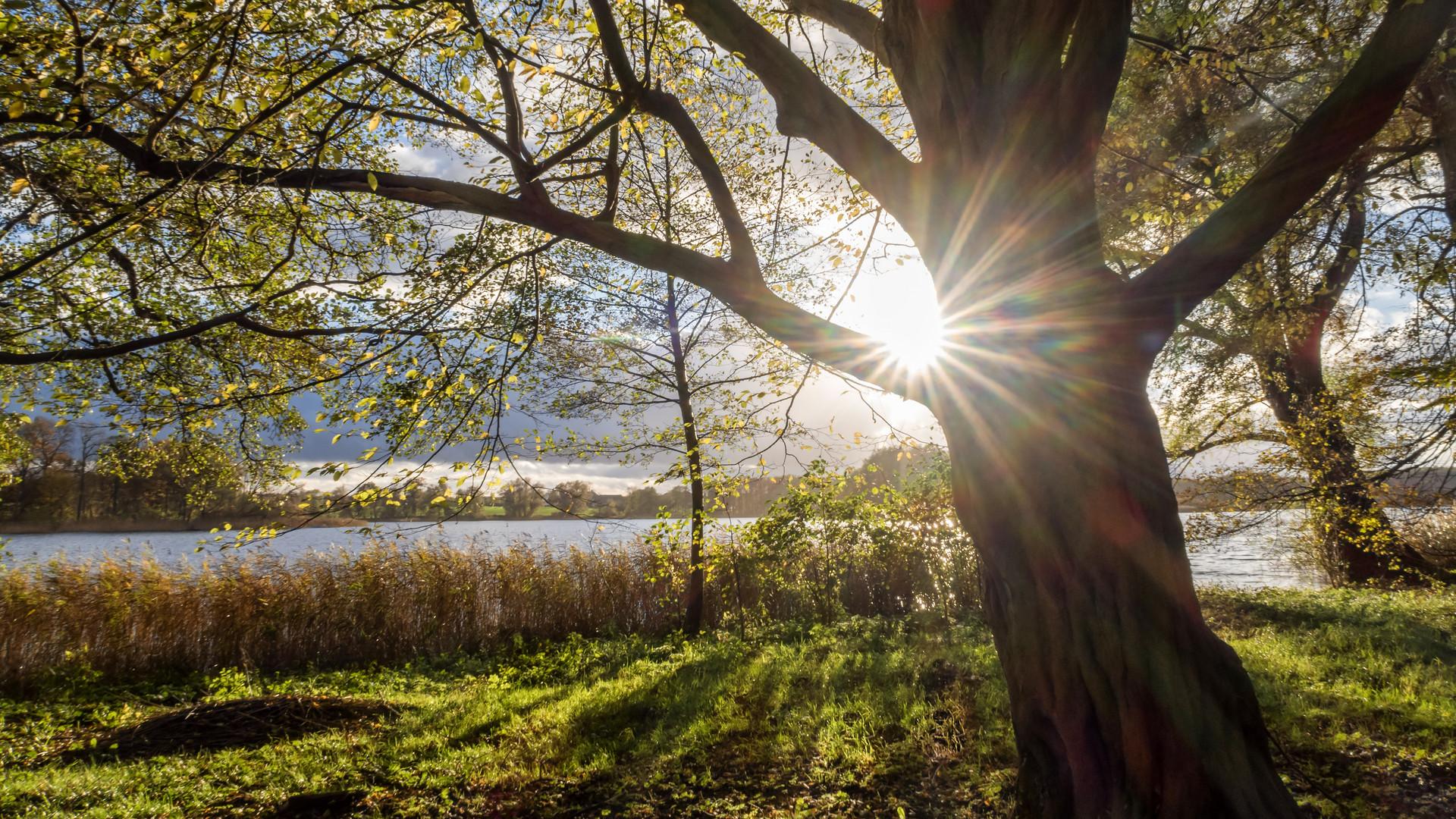 Sonne überm See
