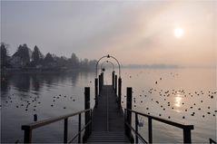 Sonne und Nebel...
