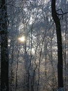 Sonne und schatten