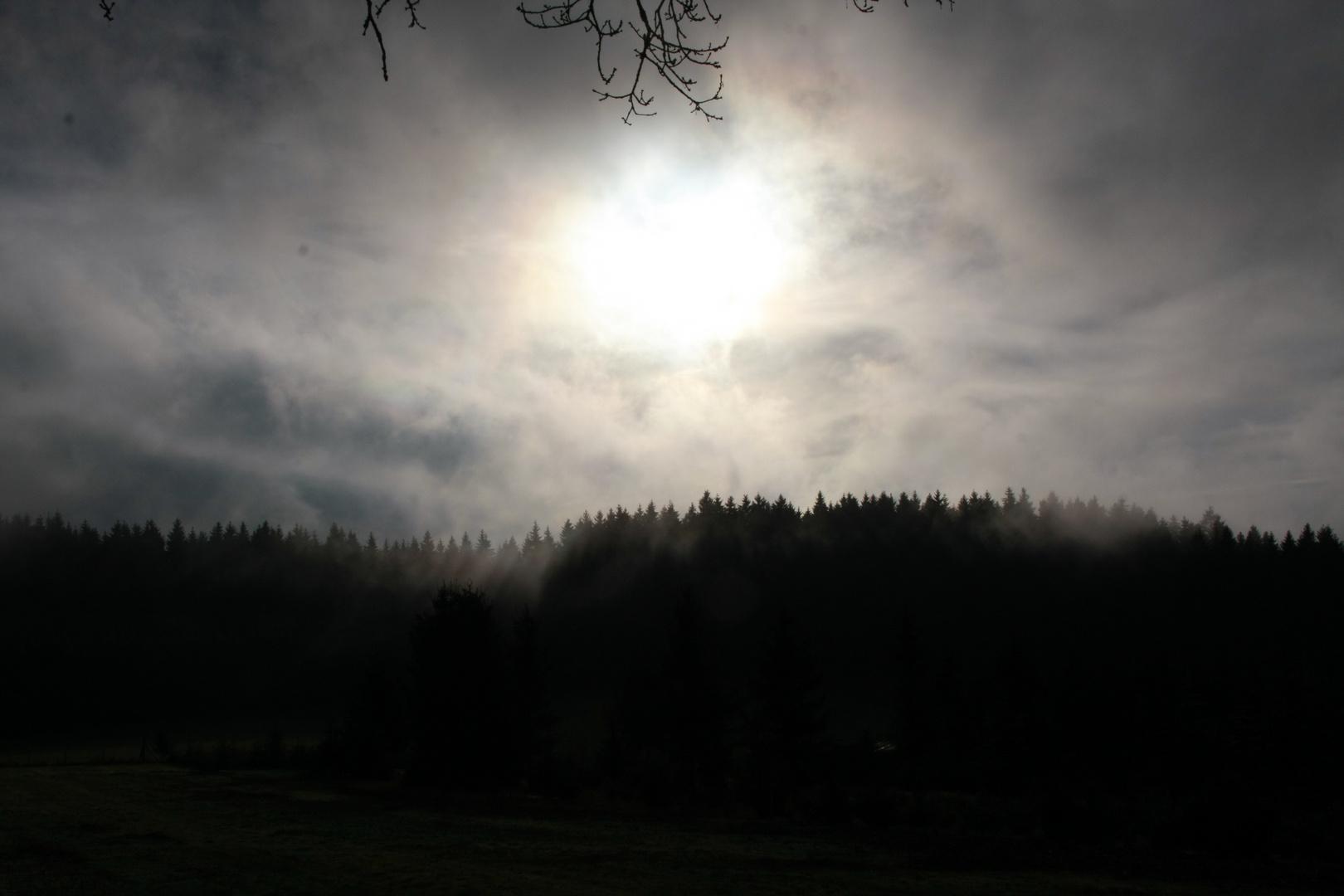 Sonne vs. Hochnebel
