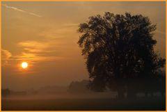 Sonne VS.Nebel