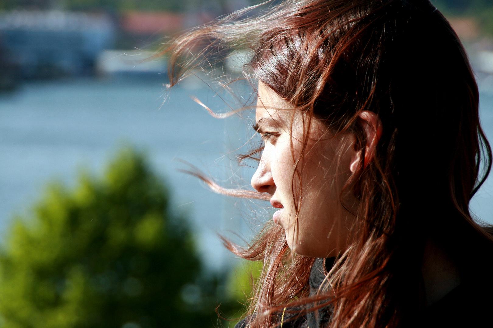 Sonne & Wind