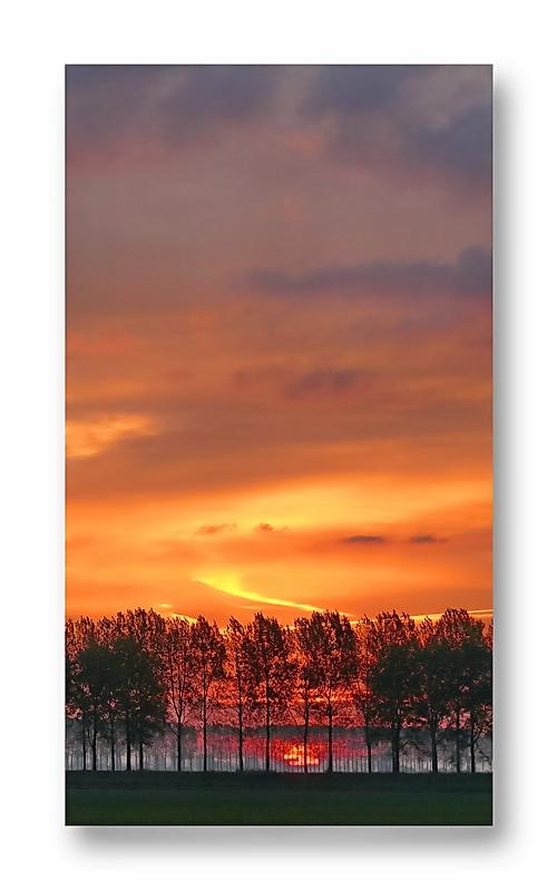 Sonneaufgang hinter Mauritsweg
