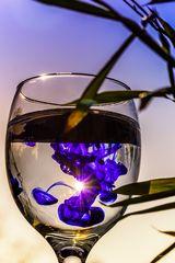 Sonnen im Glas