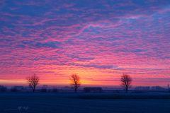 Sonnenaufgang 20.01.19
