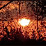 Sonnenaufgang am 28. Dezember 2014 - ganz nah