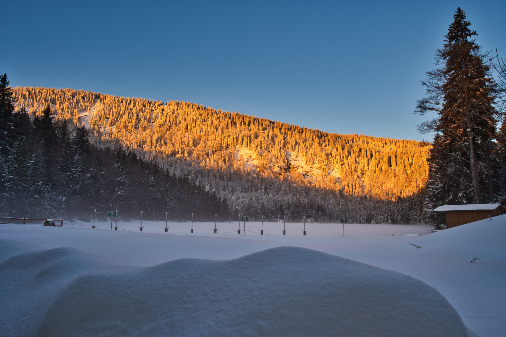 Sonnenaufgang am Arbersee