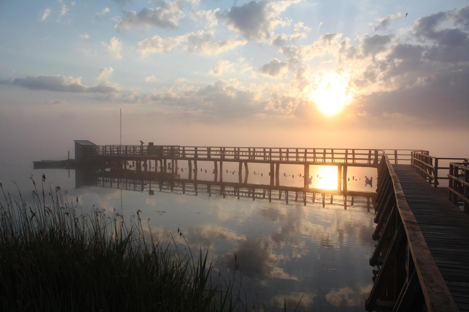 Sonnenaufgang am Federsee 1