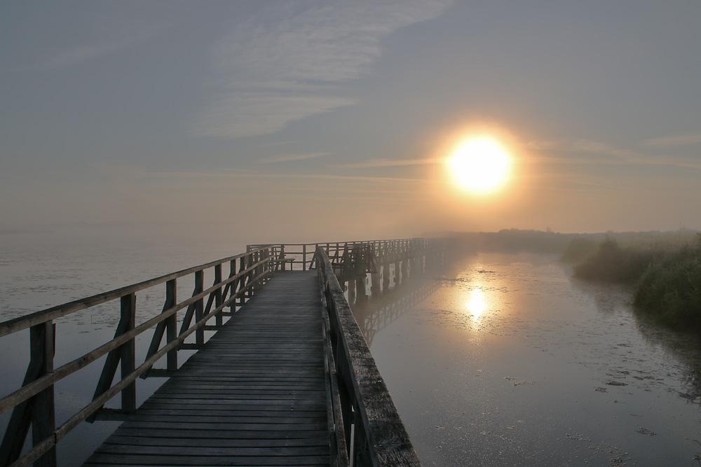 Sonnenaufgang am Federsee