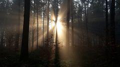 Sonnenaufgang am Hockstein