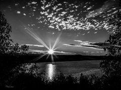 Sonnenaufgang am Lappwaldsee s-w Edition
