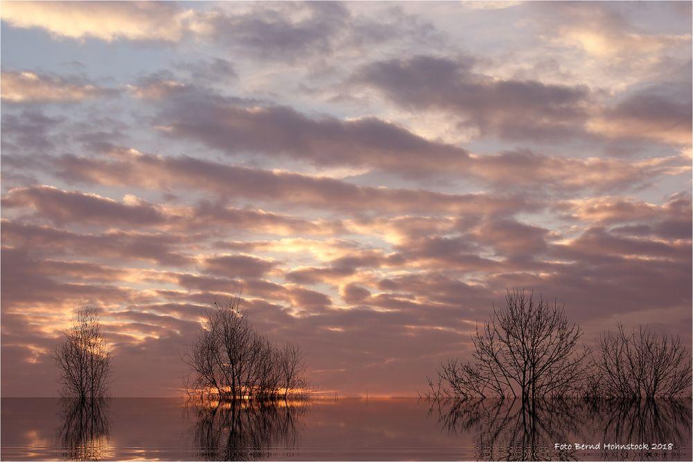 Sonnenaufgang am Niederrhein bei -10 Grad ....