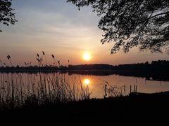 Sonnenaufgang am Schwielochsee