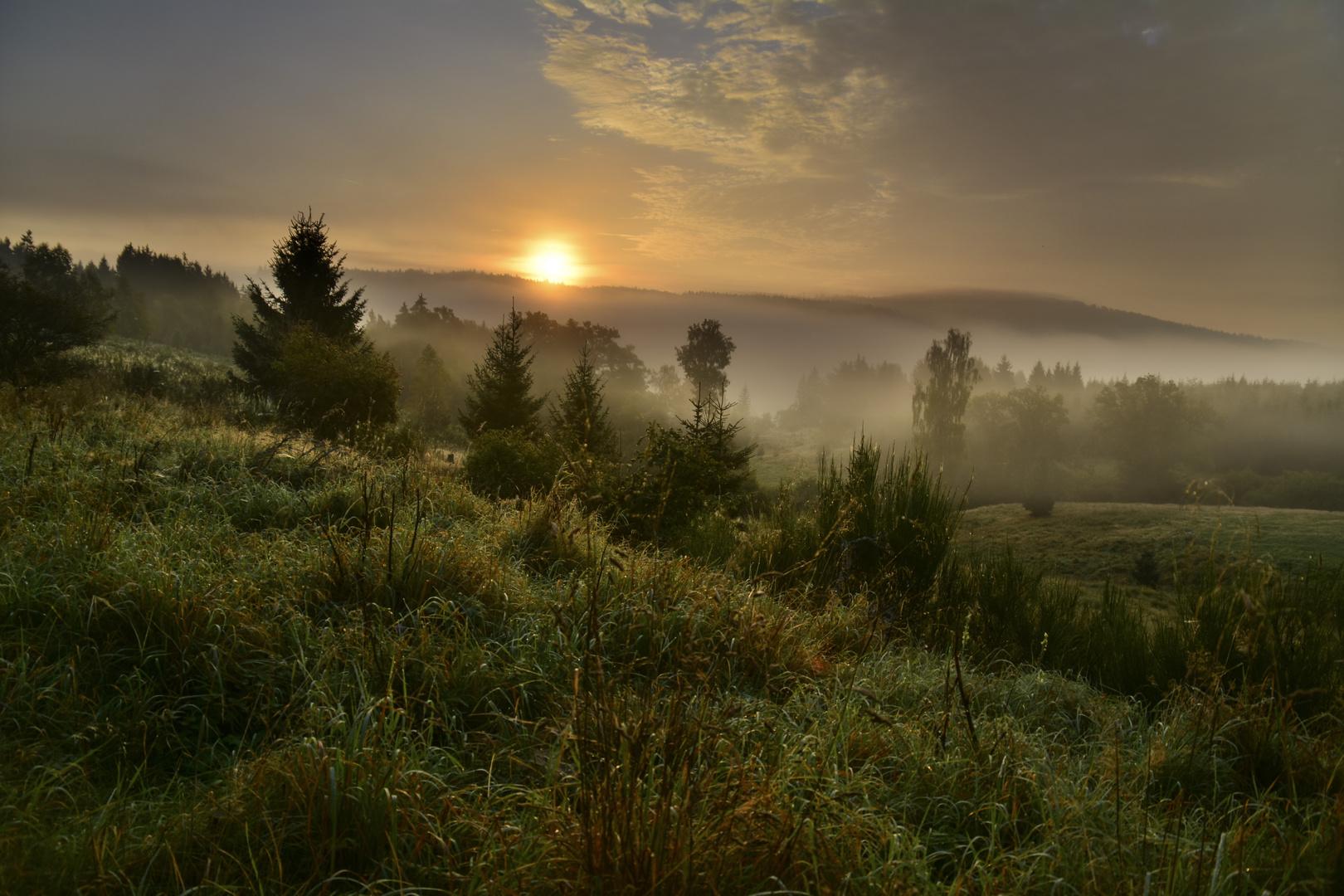 Sonnenaufgang an der Brunftwiese