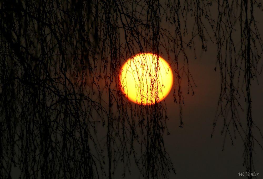 Sonnenaufgang an einem winterlichen Morgen