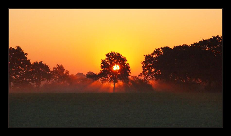 Sonnenaufgang auf dem Lande Part 1