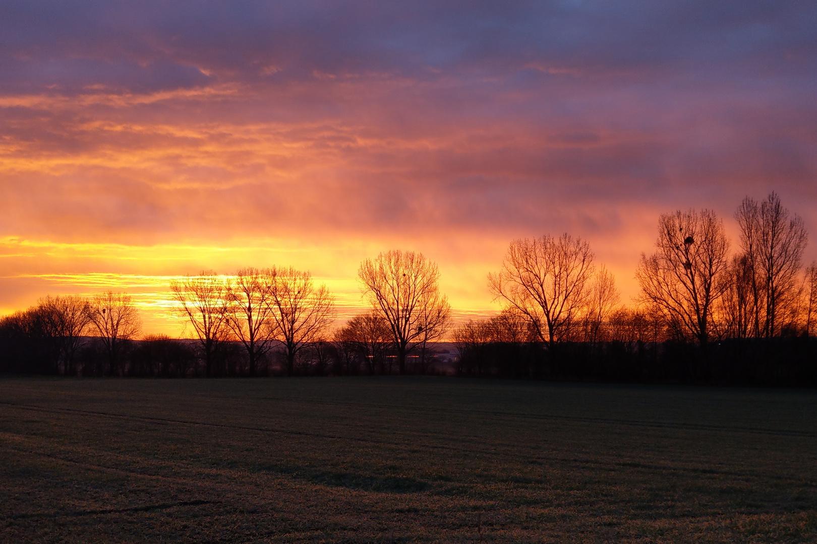 Sonnenaufgang auf dem Maifeld ...