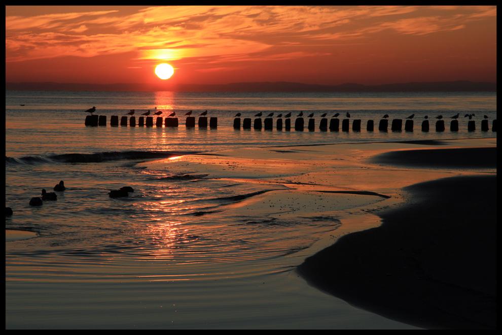 Sonnenaufgang auf Usedom