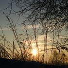 Sonnenaufgang bei -15