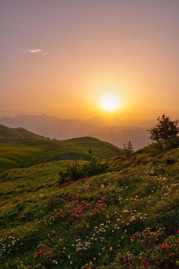 Sonnenaufgang bei der Calanderhütte