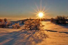 Sonnenaufgang bei der Nollendorfhöhe (Naklerov vysina) am 01.12. 2012 , der...