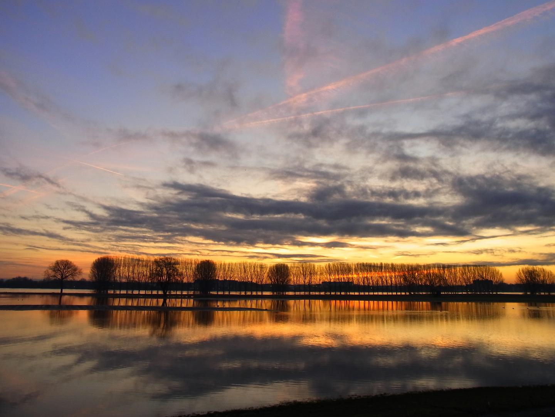 Sonnenaufgang bei Hochwasser am Rhein
