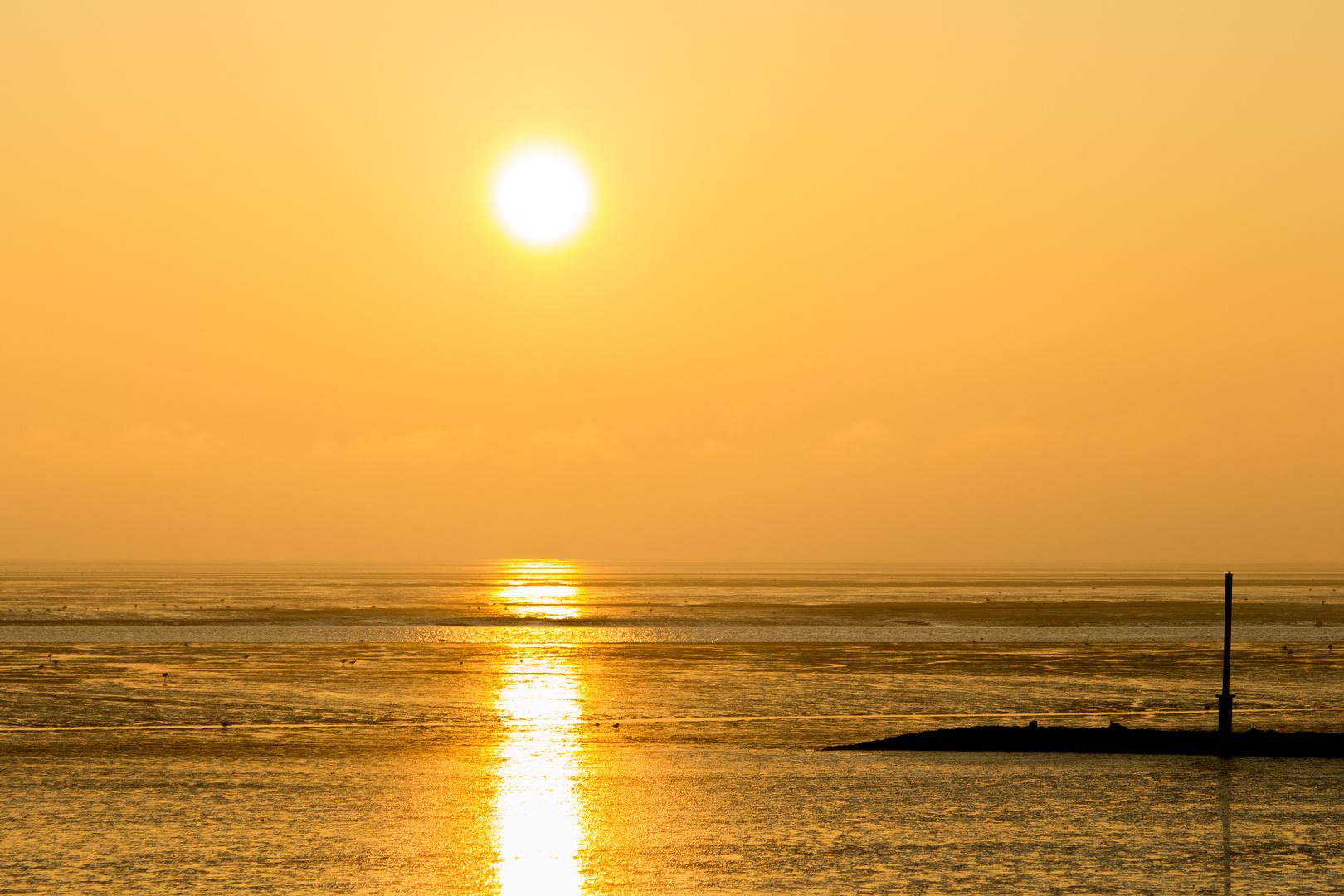 Sonnenaufgang Butjadingen