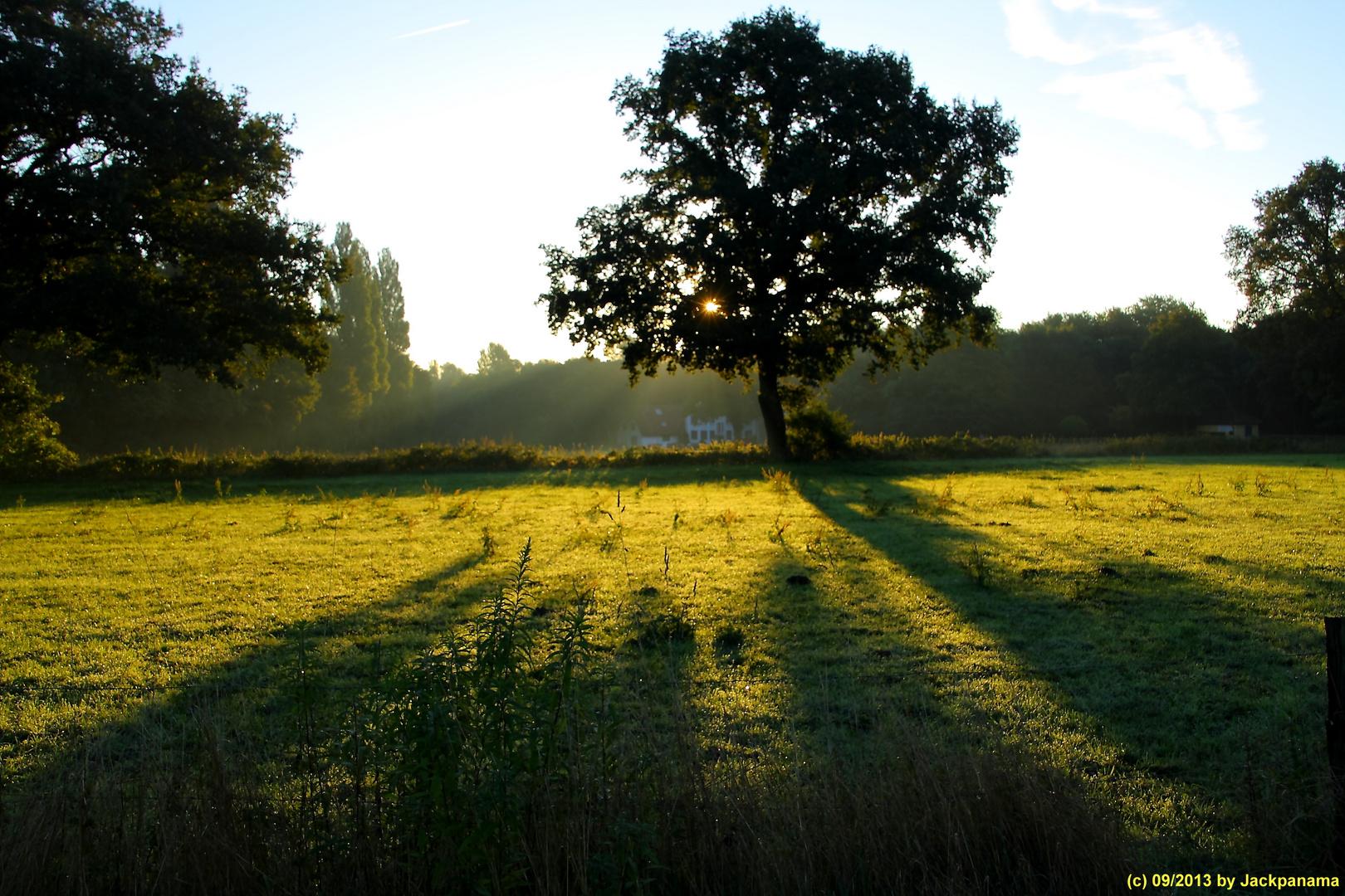 Sonnenaufgang frühmorgens in Gladbeck (1)