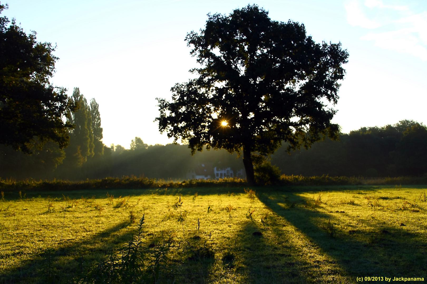 Sonnenaufgang frühmorgens in Gladbeck